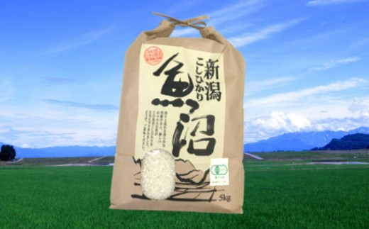 【C3005】魚沼産コシヒカリ有機栽培米5kg