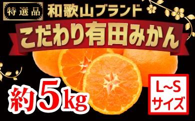 [№5745-1090]【こだわり】有田みかん 5kg(L~Sサイズ)