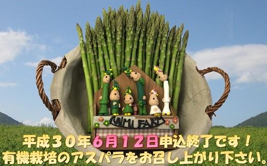 北海道赤井川村【グリーン】新見ファームの有機アスパラ:配送6月