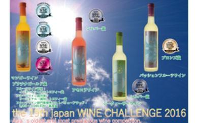 【12本入り】ジャパンワインチャレンジ2016・2017受賞セット