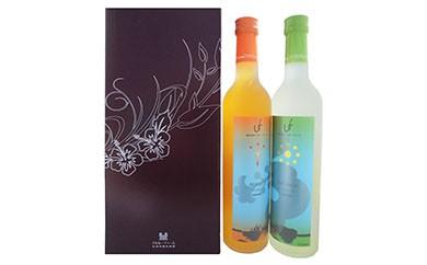 【世界NO.1フルーツワイン】トロフィー受賞セット