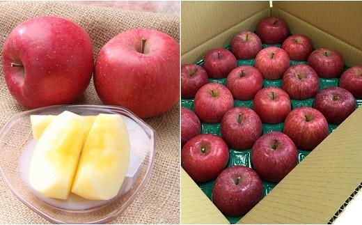FY18-211 山形のふじりんご 5kg
