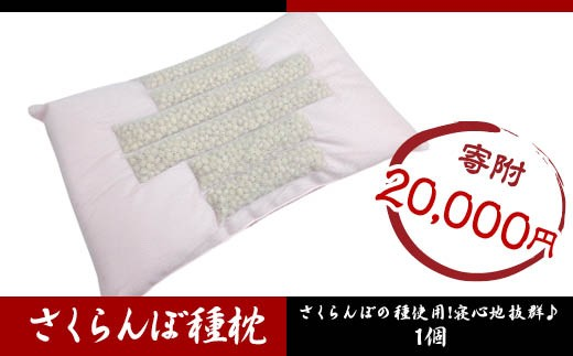FY18-585 さくらんぼ種枕