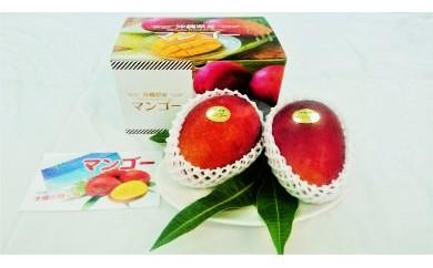 沖縄県糸満産 完熟マンゴー約1kg