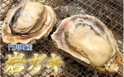 G-3 門川岩ガキセット