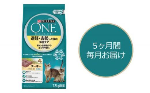 501:キャットフード 「ピュリナワン 避妊去勢した猫の体重ケア」 定期配送5ヵ月コース