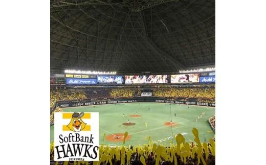 g14 福岡ソフトバンクホークス公式ファンクラブ「クラブホークス」入会権利【1049512】