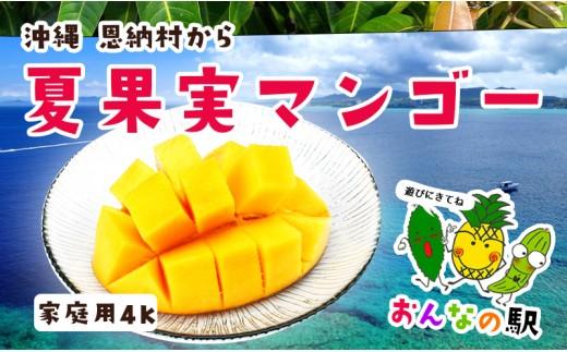 【限定】おんなの駅完熟マンゴー4kg家庭用(恩納村産)