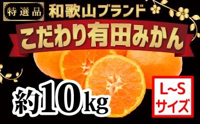 [№5745-1092]【こだわり】有田みかん 10kg(L~Sサイズ)