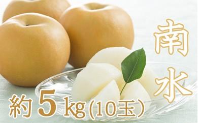 [№5767-0050]南水(日本梨) 約5kg(10玉)