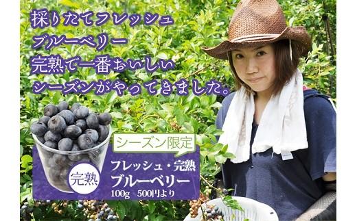 M-AA14 8月限定出荷 奈良県産フレッシュブルーベリー 100g×6