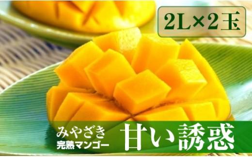 Q-1 完熟マンゴー「甘い誘惑」2Lサイズ2玉