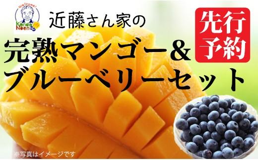 A-604 【20セット限定!】近藤さんの完熟マンゴー&ブルーベリーセット【7月下旬より発送!】