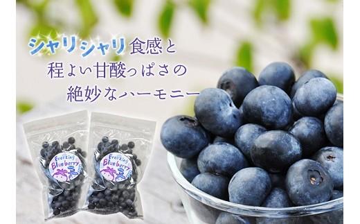 M-A10 8月から出荷【奈良県産】無農薬栽培冷凍ブルーベリー500g