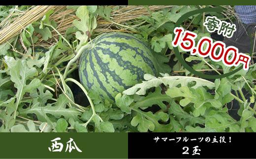 FY18-360 山形産 西瓜 (すいか) 2L2玉規格箱