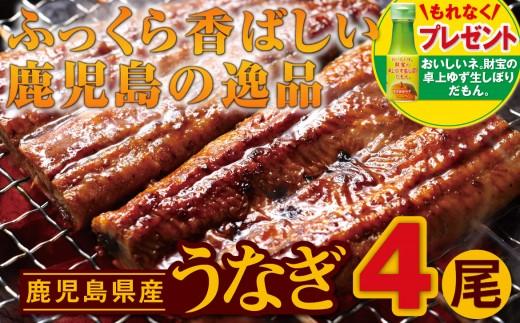 【B43030】鹿児島の逸品!うなぎ4尾