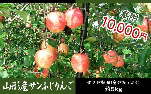 FY18-358 サンふじりんご