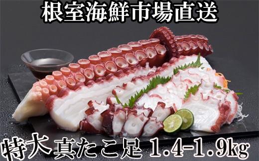 CA-42024 【北海道根室産】刺身用真だこ足[430341]