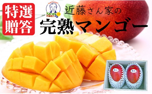A-903 【20セット限定】近藤さんの特撰贈答完熟マンゴー2個セット【7月下旬~発送】