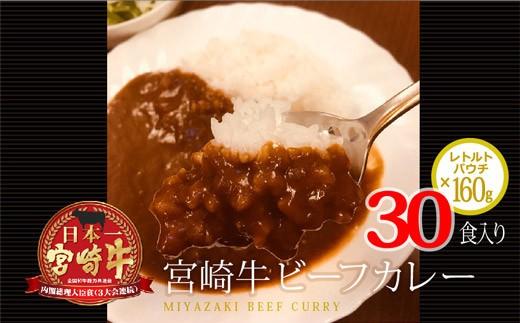 <宮崎牛使用>大容量! ビーフカレー 合計30食分(160g×30食)【B216】