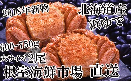 CB-42001 北海道産浜ゆで毛ガニ600~750g×2尾[435720]