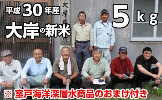 OO-01平成30年産新米5kg大岸夢田穂【白米】