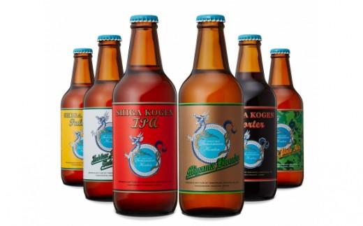 [№5658-0101]玉村本店 志賀高原ビール6本セット