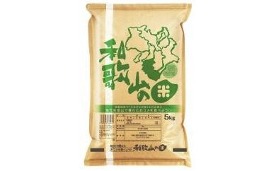 自然豊かな和歌山で育った安心・安全な『和歌山米』10kg(5kg×2袋)