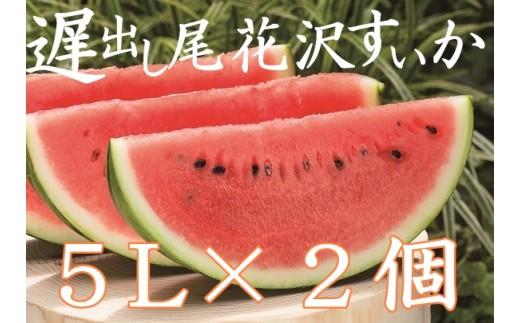 【平成30年産】大玉遅出し尾花沢すいか5Lサイズ2個