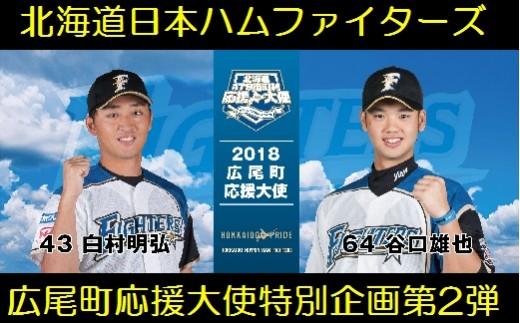 北海道日本ハムファイターズ選手コラボセットA(25セット限定)