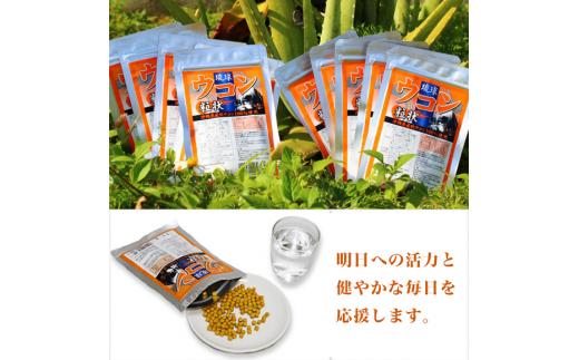 琉球ウコン粒状 300粒×10パック