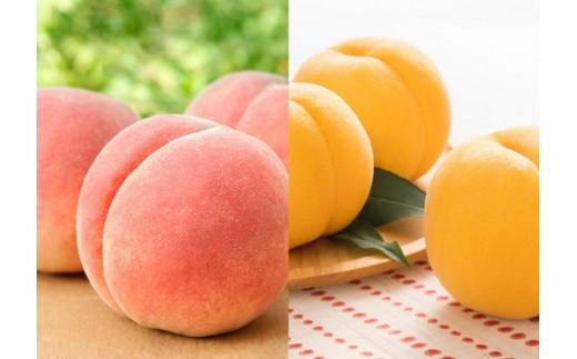 FY18-356 山形産 桃 (白桃と黄桃食べ比べセット) 約3kg7~11玉