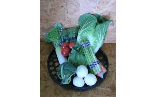 C0109 産地こだわり岩手の野菜セット