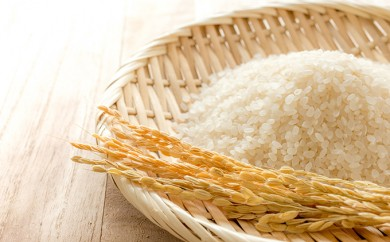[№5810-0219]平成30年産新米 ミルキークイーン 10kg 無洗米
