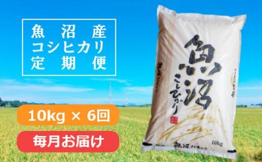 【G3001】魚沼産コシヒカリ定期便10kg×6回 /毎月お届け