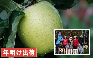 [№5731-0199]親子三代最高位の王林約3kg家庭用 年明け出荷