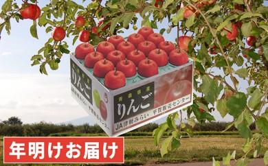 [№5731-0188]年明け 最高級 糖度保証サンふじ約10kg特選品 青森県平川市産