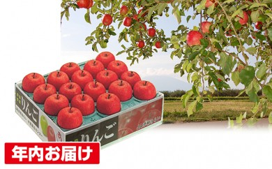 [№5731-0181]年内 蜜入り糖度14度以上サンふじ約5㎏ 青森県平川市産