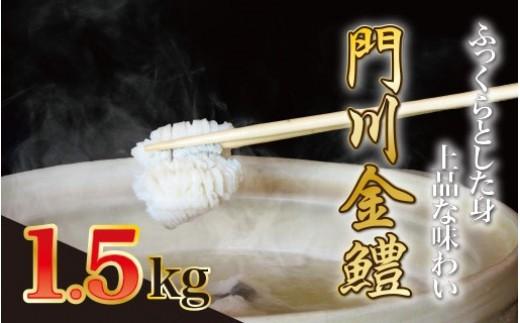 O-1 門川金鱧1.5kg