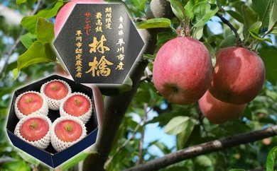 [№5731-0213]premiumサンふじ5個(約2kg) 厳選大玉 那由多のりんご園