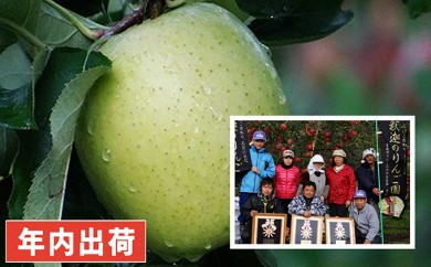 [№5731-0197]親子三代最高位の王林約3kg家庭用 年内出荷