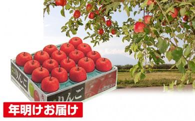 [№5731-0184]年明け 糖度保証サンふじ約5㎏ 青森県平川市産