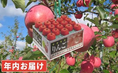 [№5731-0185]年内 糖度保証サンふじ約10kg 青森県平川市産