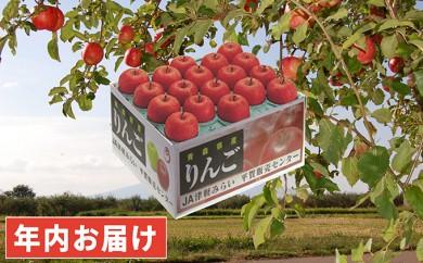 [№5731-0187]年内 最高級 糖度保証サンふじ約10kg特選品・ 青森県平川市産