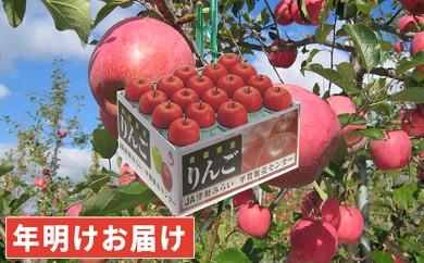 [№5731-0186]年明け 糖度保証サンふじ約10kg 青森県平川市産