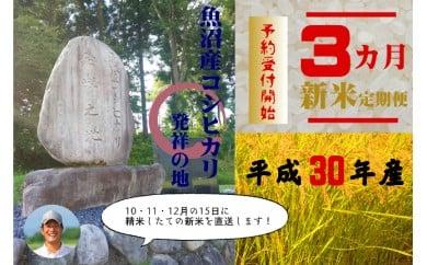 【定期便◆新米予約】魚沼コシヒカリ発祥の地!10㎏×3ヶ月