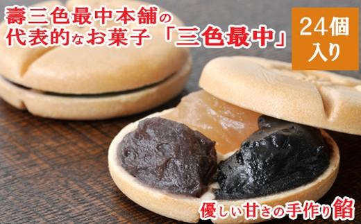 銘菓「三色最中」小豆・白・ごま餡 24個入