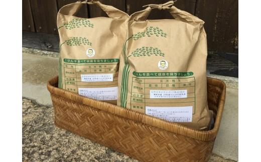 B-54【減農薬・減化学肥料】コシヒカリ(玄米)6.4kg