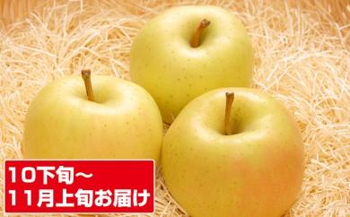 [№5898-0065]【10~11月】とき18~20個 青森県五所川原市産