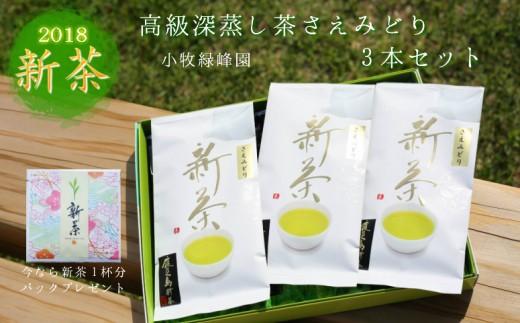 30-55 ◆高級深蒸し茶さえみどり3本セット